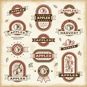 Vintage apple labels set. Vector