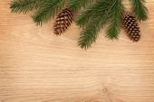 Christmas fir tree on wooden board background