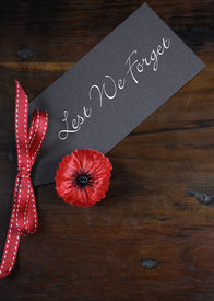 picture of lapel  - Lest We Forget Red Flanders Poppy Lapel Pin Badge for November 11 Remembrance Day appeal on dark recycled wood background - JPG