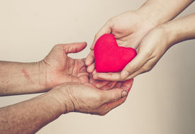 picture of empathy  - young female hand giving a red heart to old female hands - JPG