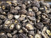 picture of stall  - A pile of dried mushrooms in a marketplace stall - JPG