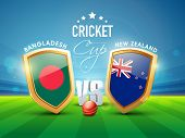 image of bangladesh  - Bangladesh Vs New Zealand Cricket match concept with glossy shield of their countries flags - JPG