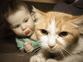 picture of baby cat  - Caucasian baby playing with red sad cat - JPG