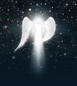 pic of cherubim  - Digital illustration of an angel in the night sky full of stars - JPG