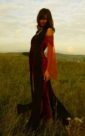 stock photo of wicca  - A beautiful fairy girl in a historical costume with long transparent sleeves standing amids a wild meadow landscape - JPG