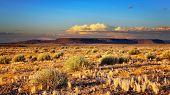 Atardecer en el desierto de Kalahari, Namibia