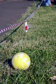 image of netball  - Netball next to field during school game - JPG