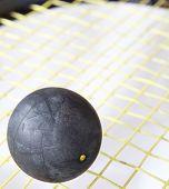 Squash-Ball auf einem Squash-Schläger-Zeichenfolgen