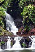 Waterfall at Lamington National Park