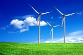 picture of wind-turbine  - Wind turbines - JPG