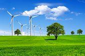 Planeta verde-ecologia