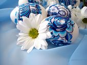beautiful blue easter eggs with white flower