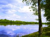 stock photo of marshlands  - river - JPG