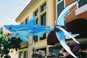 Shark Kite