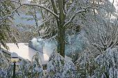 Winter Cottege