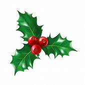Isolated Holly Berry With Leaves. Ilex Berries On Sprig With Leaf. Plant For New Year And Merry Chri poster
