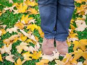 Conceptual Image Of Legs In Shoes On The Autumn Leaves. Feet Shoes Walking In Nature poster