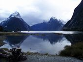 View of Milford Sound Fjords New