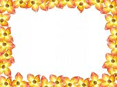 Dogwood Flower Frame