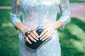 Girl In A Silver Dress With A Small Black Handbag Brass Knuckles . Fashion Clothes Accessories Set.  poster