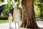Beautiful Granny And Her Little Grandchild Together Walking. Grandma And Grandson Talking. Family Co poster