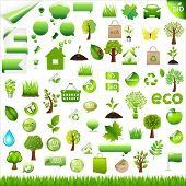 Collection Eco Design Elements, Isolated On White Background, Vector Illustration