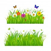stock photo of bee cartoon  - Green Grass With Flowers And Insects - JPG