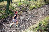 Trail Running Athletic Woman In Green Forest, Sports Inspiration And Motivation. Female Trail Runner poster