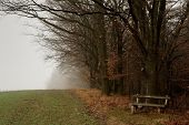 picture of wraith  - Derelict bench - JPG