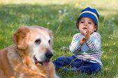 Постер, плакат: Маленький мальчик и большой собака на сад
