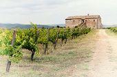 Chianti Weingut Landschaft in der Toskana, Italien