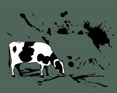 cow with spots of paint.