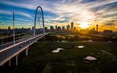 Wide Perspective Bridge And River Water Ponds Dallas Texas Sunrise Above Margaret Hunt Hill Bridge M poster