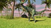 picture of dilophosaurus  - dilophosaurus in jungle - JPG