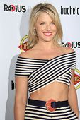 LOS ANGELES - AUG 23: Ali Larter at the premiere of RADiUS-TWC's 'Bachelorette' at ArcLight Cinemas