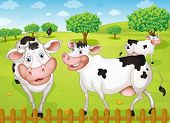 illustrtion of cows grazing in green farm