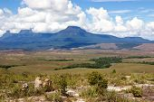 picture of canaima  - Table - JPG