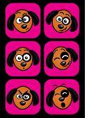 Dog facial expressions