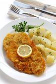 维纳炸肉排、 炸小牛肉、 奥地利菜