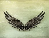 Wings black old-style vector