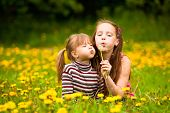 Cute 5 year old and 11 year old girls blowing dandelion seeds away.