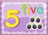 Illustrierte-Flash-Karte zeigt die Zahl 5