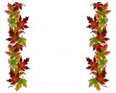 Fall Leaves Borders 3D