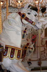picture of carousel horse  - This horse was on display at the Park in River Front Park Spokane - JPG
