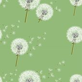 Background Seamless Pattern With Dandelion