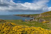 View from Welsh Coast Path Pembrokeshire UK