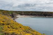 Caerfai Bay Pembrokeshire West Wales UK