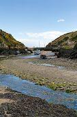 Porthclais near St David's Pembrokeshire Wales