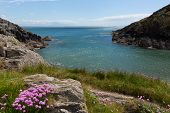 Porthclais near St Davids Pembrokeshire West Wales harbour entrance