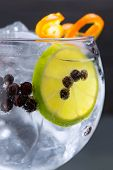 Gin Tonic cocktail Makro Closeup mit Wacholder-Beeren-Orange und Lime-Scheibe